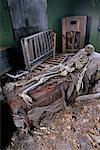 Skeleton in Haunted House    Stock Photo - Premium Rights-Managed, Artist: Brian Sytnyk, Code: 700-00262819