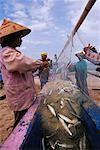 People Emptying Fishnet Bali Indonesia    Stock Photo - Premium Rights-Managed, Artist: Carl Valiquet, Code: 700-00285406