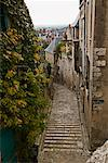 Path between Buildings Blois France    Stock Photo - Premium Rights-Managed, Artist: George Simhoni, Code: 700-00285771