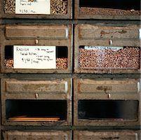 Drawers of Radish Seeds    Stock Photo - Premium Rights-Managednull, Code: 700-00286398