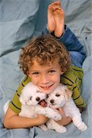 Boy Lying Down Holding Puppies    Stock Photo - Premium Rights-Managednull, Code: 700-00341108