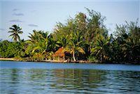 Hut, Bora Bora, French Polynesia    Stock Photo - Premium Rights-Managednull, Code: 700-00343469