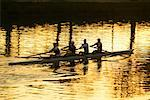 Rowers on River    Stock Photo - Premium Rights-Managed, Artist: R. Ian Lloyd, Code: 700-00363259