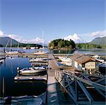Tofino Harbour, British Columbia, Canada    Stock Photo - Premium Rights-Managed, Artist: Alberto Biscaro, Code: 700-00425574