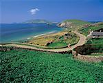panoramic view of a winding road near a sea coast Stock Photo - Premium Royalty-Freenull, Code: 618-00441350