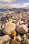 Rocky Coast at Cape Canso, Nova Scotia, Canada