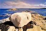 Boulder on Coast at Cape Canso, Nova Scotia, Canada