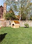 Dog House in Backyard    Stock Photo - Premium Rights-Managed, Artist: Tom Feiler, Code: 700-00515737