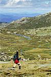 Hiking, Kosciuszko National Park, New South Wales, Australia    Stock Photo - Premium Rights-Managed, Artist: R. Ian Lloyd, Code: 700-00524779