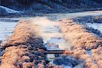 Overview of Crowd on Bridge, Hokkaido, Japan    Stock Photo - Premium Rights-Managed, Artist: Jeremy Woodhouse, Code: 700-00527512