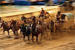 Chuckwagon Racing at the Calgary Stampede, Calgary, Alberta, Canada