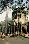 Ta Prohm Temple, Angkor Wat, Cambodia    Stock Photo - Premium Rights-Managed, Artist: Pierre Tremblay, Code: 700-00543634
