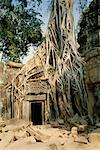 Ta Prohm Temple, Angkor Wat, Cambodia    Stock Photo - Premium Rights-Managed, Artist: Pierre Tremblay, Code: 700-00543637