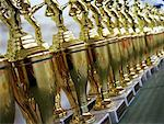 Row of Trophies    Stock Photo - Premium Rights-Managed, Artist: Andrew Kolb, Code: 700-00544258
