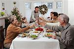 Family Toasting at Christmas    Stock Photo - Premium Rights-Managed, Artist: Jerzyworks, Code: 700-00547140