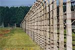 Fence at Auschwitz Concentration Camp, Oswiecim, Poland    Stock Photo - Premium Rights-Managed, Artist: Mark Downey, Code: 700-00547454