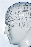 perception - Close-Up of Phrenology Diagram    Stock Photo - Premium Royalty-Freenull, Code: 600-00551137