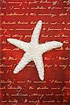 Sea Star on Writing    Stock Photo - Premium Rights-Managed, Artist: David Muir, Code: 700-00551164