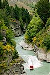 Jet Boating On the Shotover River, Queenstown, South Island, New Zealand