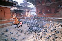 People Walking Through Courtyard Full of Pigeons, Kathmandu, Nepal    Stock Photo - Premium Rights-Managednull, Code: 700-00555608