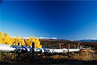 Trans-Alaska Pipeline, Alaska, USA    Stock Photo - Premium Rights-Managednull, Code: 700-00557621