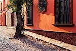 Colourful Buildings, San Miguel de Allende, Guanajuato, Mexico    Stock Photo - Premium Rights-Managed, Artist: Jeremy Woodhouse, Code: 700-00560823