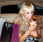 Woman in Back Seat of Car with Chihuahua    Stock Photo - Premium Rights-Managed, Artist: Masterfile, Code: 700-00604939