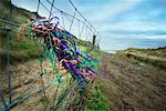 Ribbons on Fence Llangennith, West Wales UK    Stock Photo - Premium Rights-Managed, Artist: Hugh Burden, Code: 700-00608359