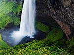 Seljalandsfoss Waterfall, Iceland    Stock Photo - Premium Rights-Managed, Artist: Jeremy Woodhouse, Code: 700-00609782