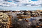 Rocky Shoreline, Nova Scotia, Canada