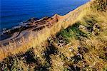 Cabot Trail, Cape Breton National Park, Nova Scotia, Canada    Stock Photo - Premium Rights-Managed, Artist: J. A. Kraulis, Code: 700-00618083