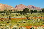 Mountains Near Haasts Bluff, Northern Territory, Australia
