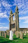 Ruins of St Andrews Cathedral, Scotland    Stock Photo - Premium Rights-Managed, Artist: Steve Craft, Code: 700-00635565