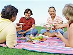 parents with their children on a picnic Stock Photo - Premium Royalty-Freenull, Code: 618-00690861