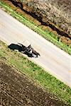 Aerial view of horse and buggy on paved road Stock Photo - Premium Royalty-Free, Artist: Garry Black, Code: 604-00753979