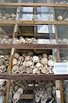 Skulls, Memorial of The Killing Fields, Cambodia    Stock Photo - Premium Rights-Managed, Artist: dk & dennie cody, Code: 700-00795771