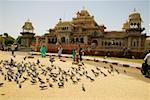People feeding pigeons outside a museum, Government Central Museum Jaipur, Rajasthan, India Stock Photo - Premium Royalty-Free, Artist: IIC, Code: 625-00805905