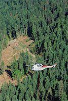 Heli-logging, British Columbia, Canada    Stock Photo - Premium Royalty-Freenull, Code: 600-00847294