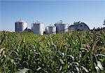 Grain Silos    Stock Photo - Premium Rights-Managed, Artist: Jerzyworks, Code: 700-00847651