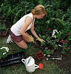 Woman Gardening    Stock Photo - Premium Rights-Managed, Artist: TSUYOI, Code: 700-00848574