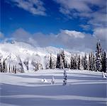 Valhalla Mountains, British Columbia, Canada    Stock Photo - Premium Royalty-Free, Artist: Red Rocket Stock, Code: 600-00864245