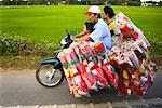Family with Packages on Motorcycle, Phuong Nam, Vietnam    Stock Photo - Premium Rights-Managed, Artist: R. Ian Lloyd, Code: 700-00866446