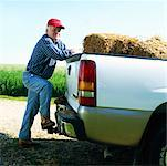 Farmer Leaning on Pickup Truck    Stock Photo - Premium Rights-Managed, Artist: Masterfile, Code: 700-00910110