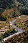Rice Terraces Along Chico River, Sabangan, Mountain Province, Luzon, Philippines