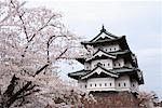 Hirosaki Castle, Hirosaki, Japan    Stock Photo - Premium Rights-Managed, Artist: Arian Camilleri, Code: 700-00947622