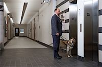 Blind Man With Guide Dog Waiting For Elevator    Stock Photo - Premium Rights-Managednull, Code: 700-00947824