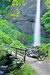 Latourell Falls, Columbia River Gorge National Scenic Area, Oregon, USA    Stock Photo - Premium Rights-Managed, Artist: F. Lukasseck, Code: 700-00983528