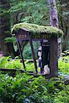 Public Phone Booth, Olympic National Park, Washington, USA    Stock Photo - Premium Rights-Managed, Artist: F. Lukasseck, Code: 700-00983599