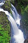 Sol Duc Falls, Olympic National Park, Washington, USA    Stock Photo - Premium Rights-Managed, Artist: F. Lukasseck, Code: 700-00983608