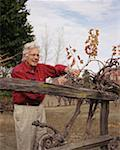 Portrait of a Senior Male Gardening Stock Photo - Premium Royalty-Freenull, Code: 621-00994446